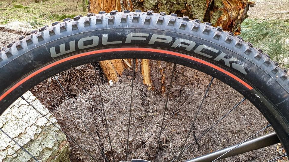 Wolfpack Trail – måske dit næste dæk?