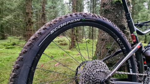 Pirelli Scorpion Trail – Dæk til test