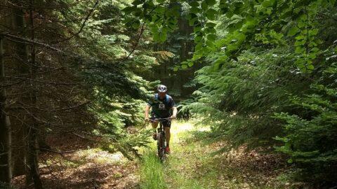 Sommerferie med mountainbiken del 2: Langeland og Sydfyn