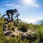 Canyon Strive med 29″ hjul og revideret shapeshifter