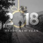 MTB året der gik 2017